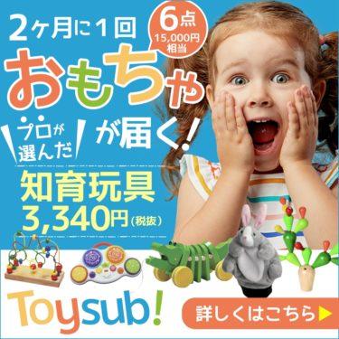 【トイサブ!】知育玩具の定額レンタルサービス(子供の年齢でカスタマイズ)の知られざる秘密・・・