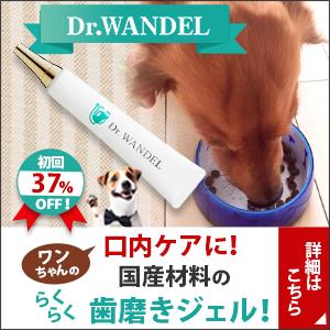 受け継がれる愛犬の口腔ケアジェル【ドクターワンデル】