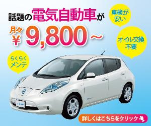 電気自動車専門Naviの取扱説明書