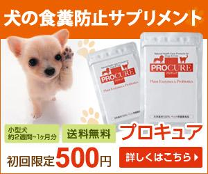 時代に愛される酵素とプロバイオティクスのペット(犬・猫)用サプリメント【プロキュア】