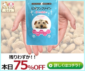 小型犬用スキンケアサプリ【ビオワンファイン】虎の巻